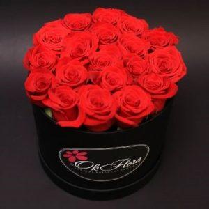 Sfaturi si indrumari pentru cumpararea trandafirilor